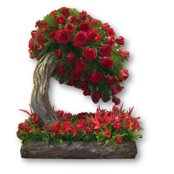 Rbol de rosas florister a en caracas env os a domicilio - Arbol de rosas ...