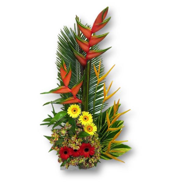"""Arreglo de Flores Exóticas """"Calipso"""""""