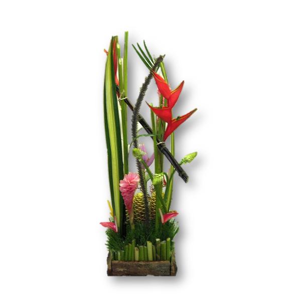 """Flores exóticas """"Karibe con Tempo"""