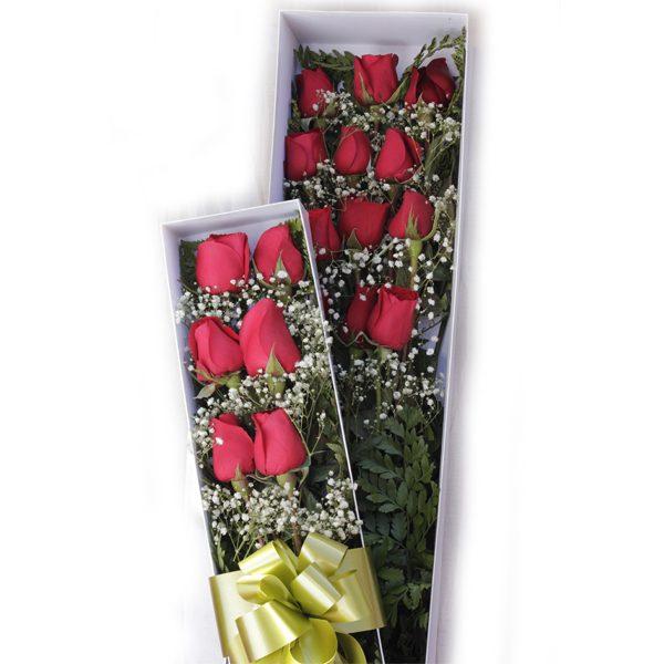Caja de Rosas Aflora